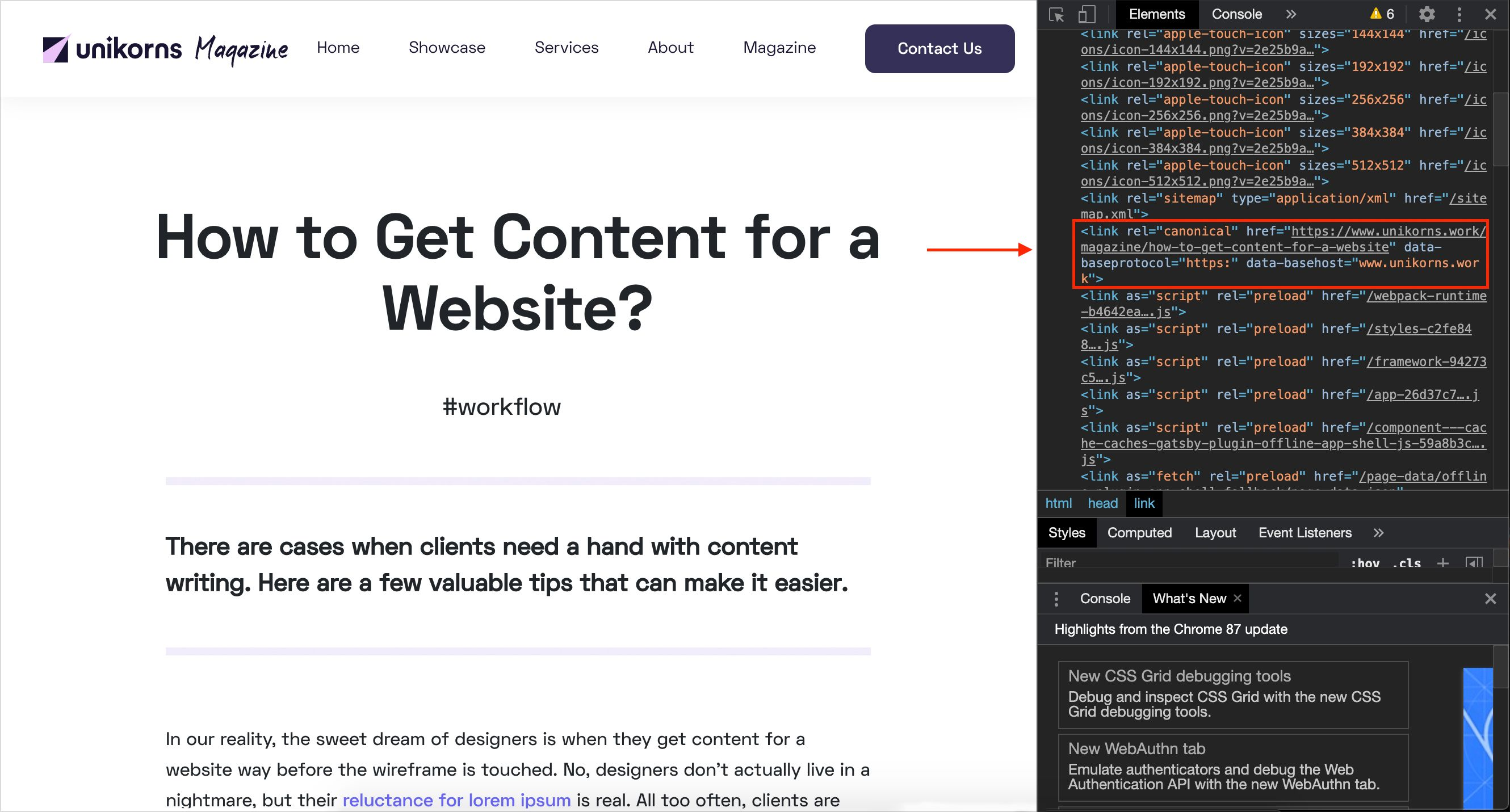 Screenshot that represents HTML canonical link How to Get Content for a Website